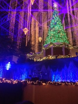 Gaylord Palms lights