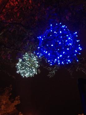 Winter Park lights